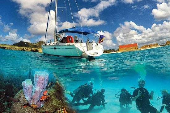 Sail and Dive from a Private Yacht in...