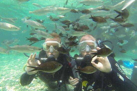 Scuba Diving from Fethiye