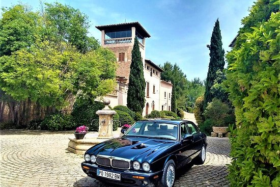 Tour privato in un'auto Jaguar