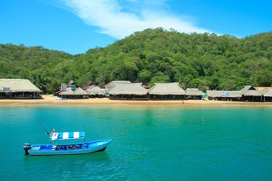 5-Bay Private Experience in Panga