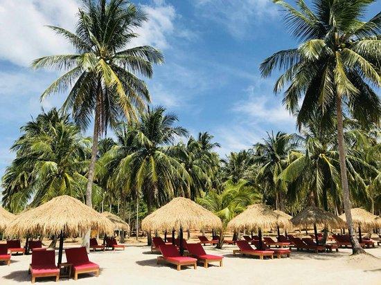 Ko Yao Yai, Thái Lan: Coco Beach #Premium Beach bed zone