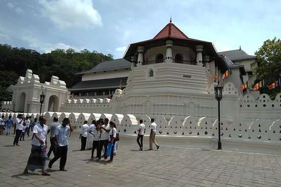Private Day trip Kandy & pinnawatal...