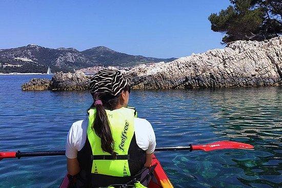 Visite guidée en kayak dans les îles...