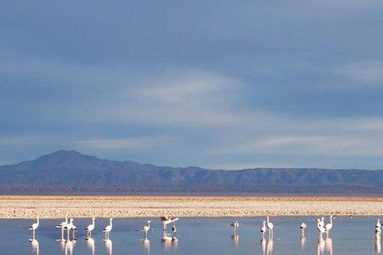 Atacama Salt Flat and Toconao Town...