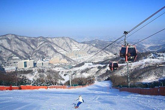 Vintermoro på Vivaldi Ski Resort med...