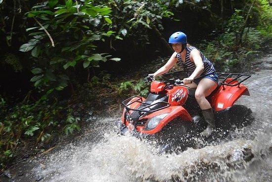 Lo mejor de Bali Quad Bike Adventure