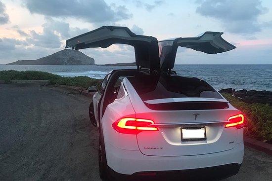 夏威夷唯一的TESLA岛之旅 - 豪华定制私人之旅