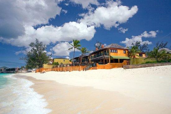 Bob Marley Resort Beach Day com almoço