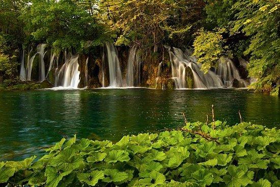 Tour guidato dei laghi di Plitvice
