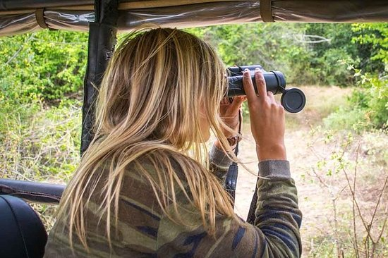Leopard Safari Tour nel Yala National