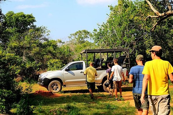 Private Tour : Yala National Park...