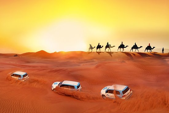 Premium Red Dunes & Camel Safari with...
