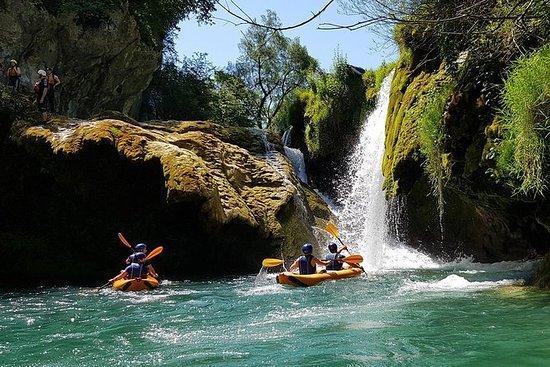 Safari en kayak