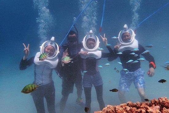 Sea TREK头盔潜水和立式Paddleboard课程