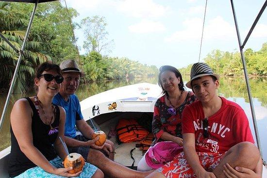 Bootssafari-Tour im Bentota River