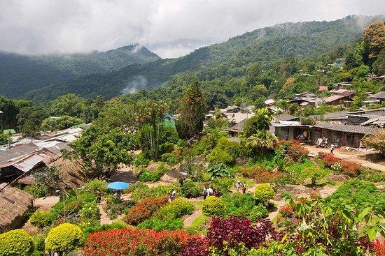 Wat Doi Suthep und Hmong Hill Tribe...