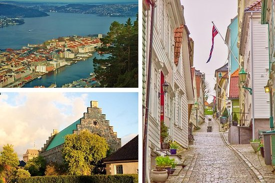 PRIVATE TOUR: Bergen sightseeing, 4...