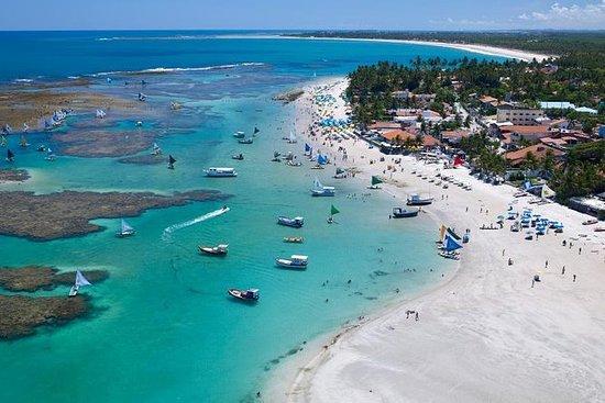 Famosa playa de Porto de Galinhas...