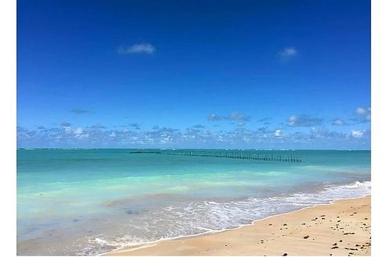 São Miguel dos Milagres Beach - from...