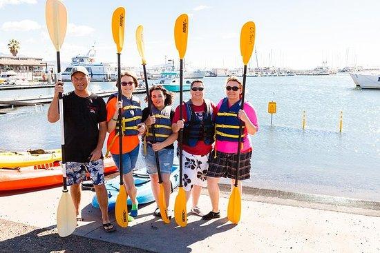 Paseo en kayak por el puerto de Santa...