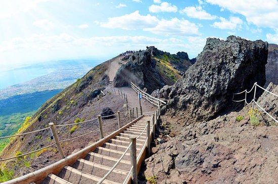 Tour de Herculano y Volcán Vesubio...