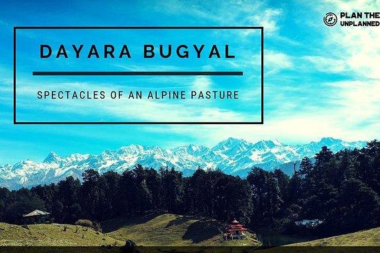 Dayara Bugyal Trek-Plan The Unplanned