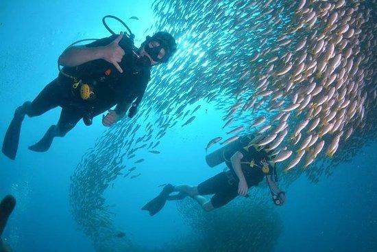 Entdecken Sie SCUBA Diving