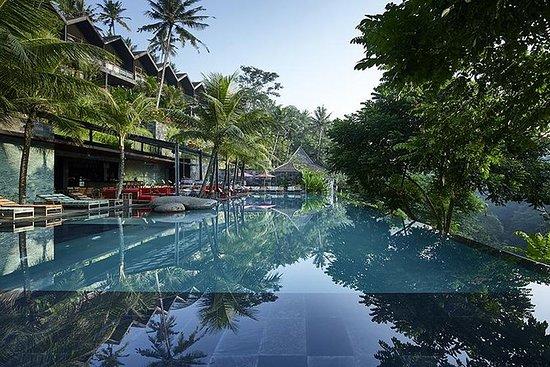 Bali Ubicados en el pescado de la selva...