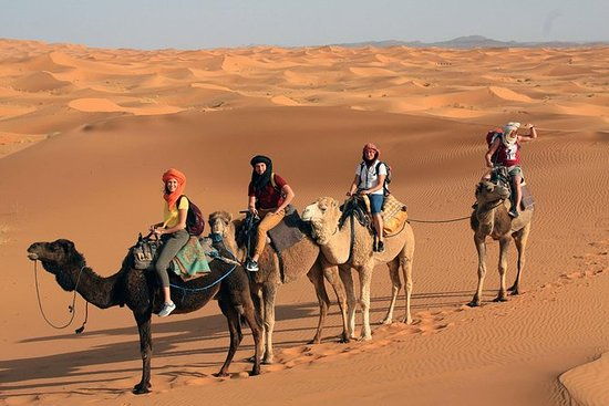 3 days morocco desert trip from...