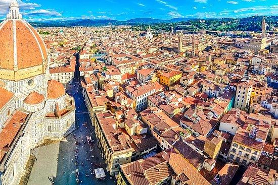 Excursão de dia inteiro a Florença e...