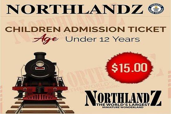 Ticket Enfant (2-12)