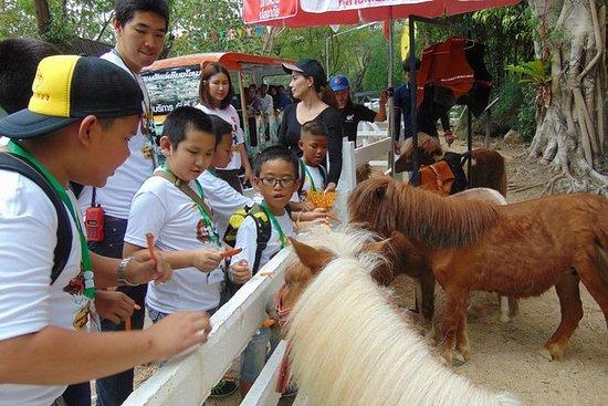 Tour de medio día a @Chiangmai Zoo...