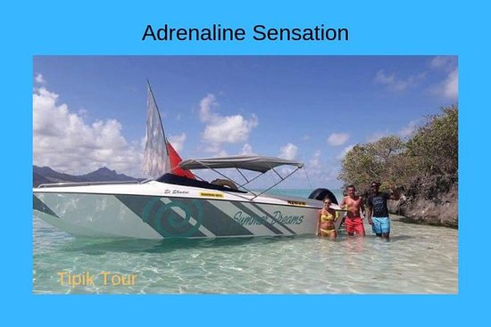 Isle aux cerf-Speed Boat Tour (Full...