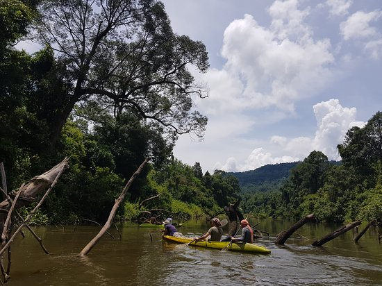 Koh Kong Province, Cambodja: Kayaking along the Areng valley's river for spotting endangered species of wildlife such as Siamese crocodiles and many kind of birds