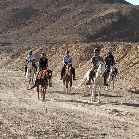 HorseTrips Hurghada
