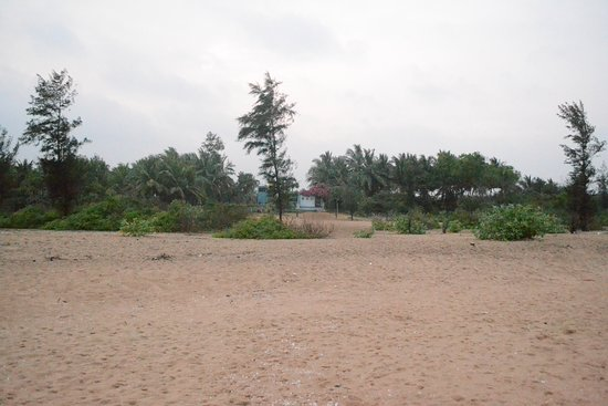 The Dune Eco Village & Spa: View of property from beach