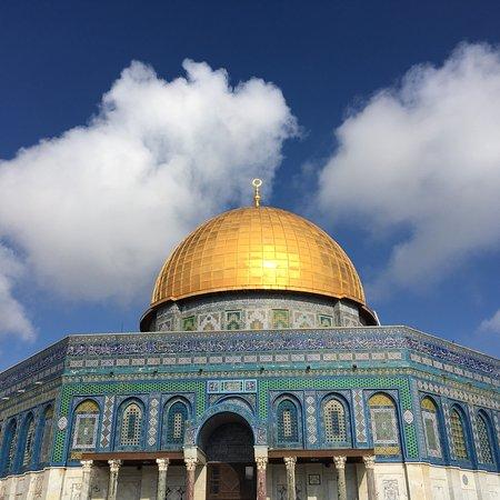 Gavriella Reiseleiter-Israel Tours