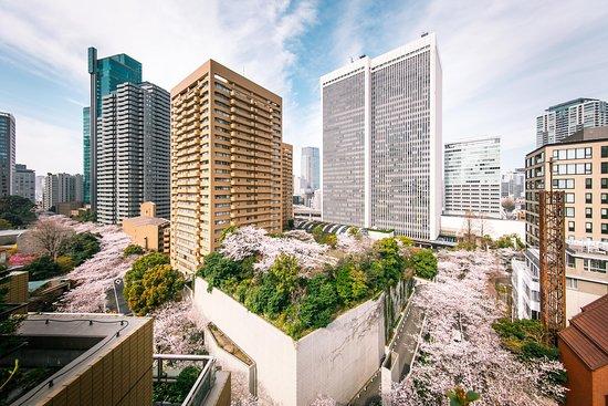 Akasaka, اليابان: アークヒルズ