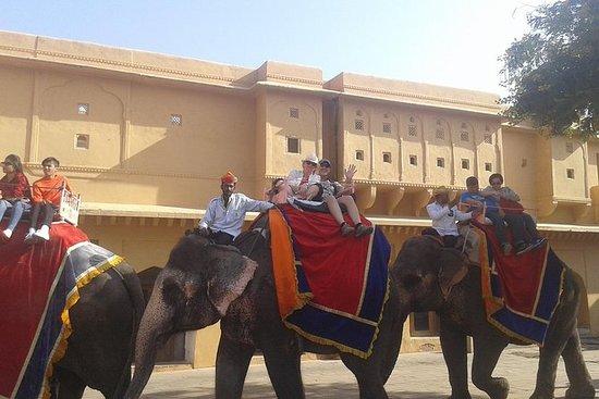 Viagem de um dia a Delhi Jaipur de...