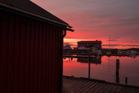 Donso, Sweden: Isbolaget från hamnen