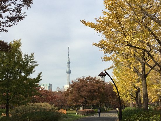 Sarue Onshi Park