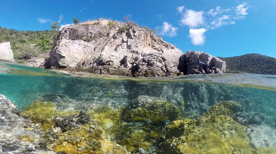 East End, St. John: Hansen bay is a great spot to see fish, sea turtles and more.