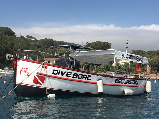 Baiarda Dive Boat Excursions