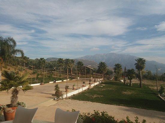 Periana, España: Vista de parte de los jardines desde la terraza del restaurante
