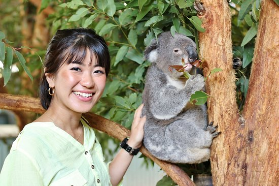 Billabong Zoo: Koala & Wildlife Park