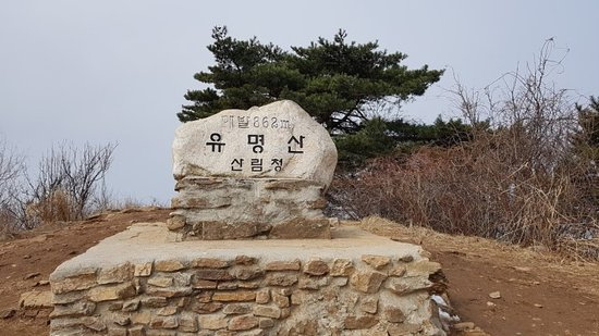 Yumyeongsan Mountain