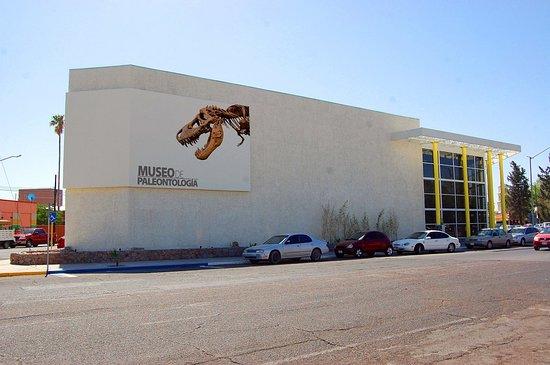 Museo de Paleontología en Delicias Chihuahua.