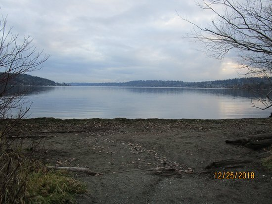 Kenmore, WA: The view from the direct water access beach