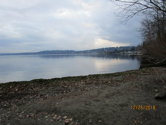 Kenmore, WA: The view from the direct water access beach-2