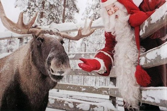 Lapland Ranua Zoo Guided Trip from...